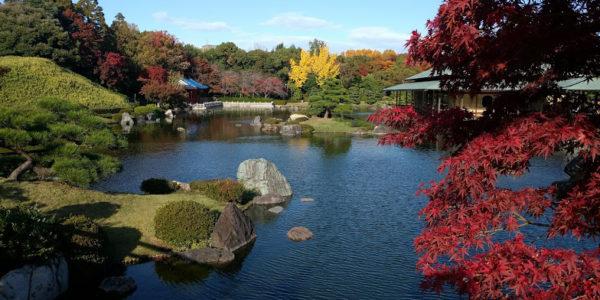 日本庭園紅葉2