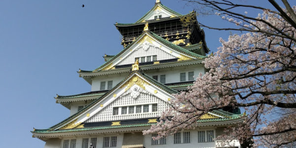 大阪城桜時期2